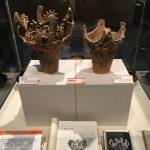福島県立博物館に縄文式土器がやってきた
