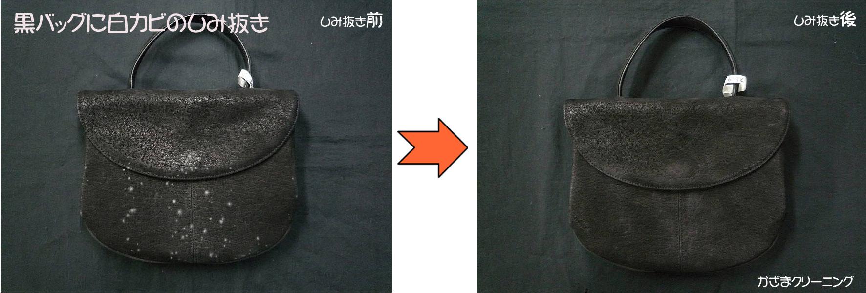 黒バッグに発生した白カビの染み抜き